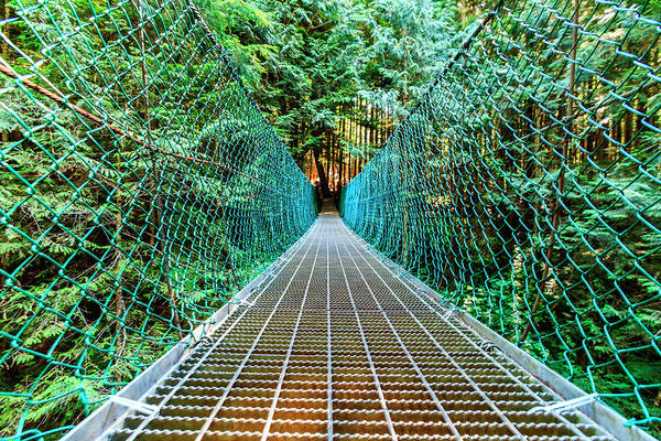 Grating Wall Art - Photograph - Suspension Bridge On Vancouver Island, B by James White