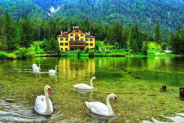 Dolomites Photograph - Swam Lake by Midori Chan