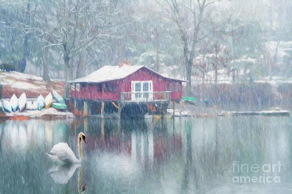 Swan Boats Photograph - Swan Lake by Darren Fisher