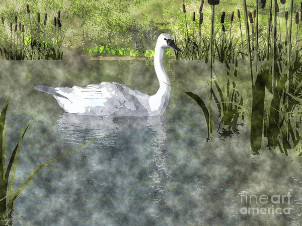 Painting - Swan On Pond Watercolor by Elle Arden Walby