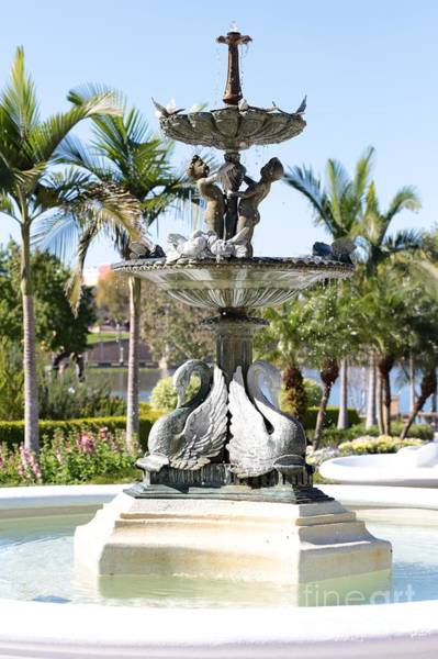 Photograph - Swan Fountain In Lakeland by Carol Groenen