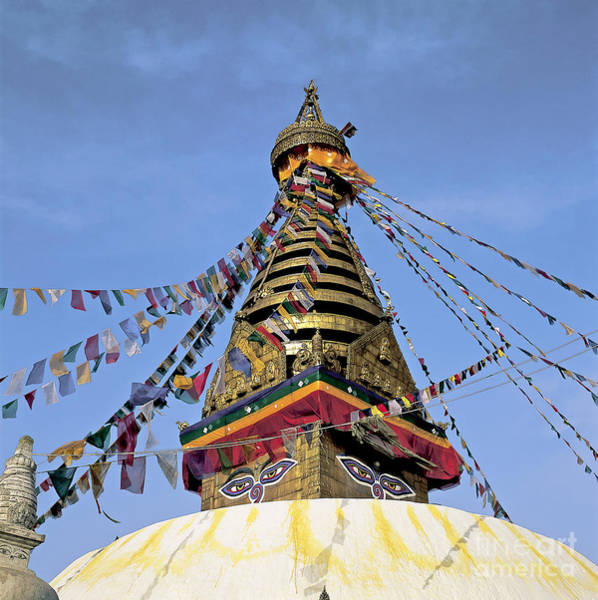 Wall Art - Photograph - Swayambhunath by Tierbild Okapia