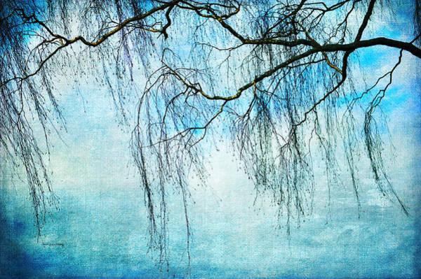 Photograph - Swaying In The Wind by Randi Grace Nilsberg
