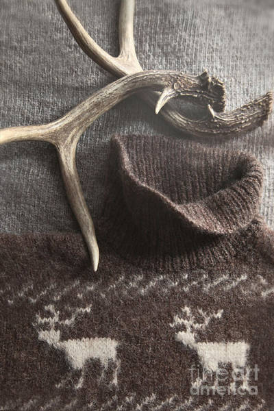 Photograph - Sweater With Deer Antlers With Rustic Look by Sandra Cunningham