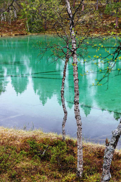 Turquoise Lake Photograph - Sweden, Jamtland, Valadalen Nature by Fredrik Norrsell