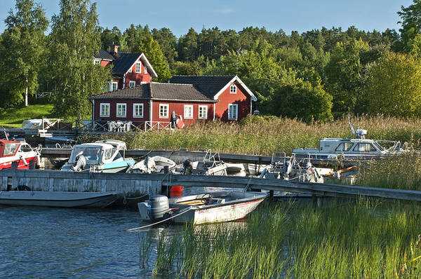 Photograph - Swedish Summer by Nancy De Flon