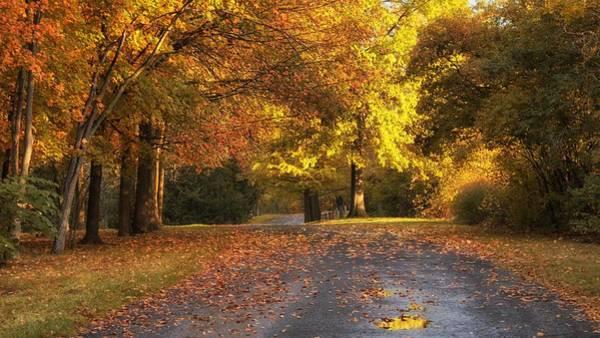 Photograph - Sweet Autumn Moments by Darlene Bushue