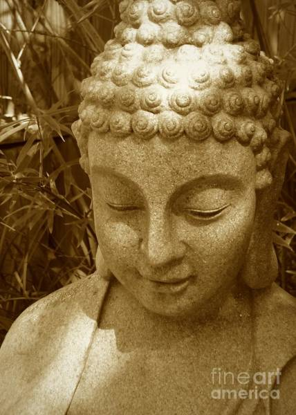 Photograph - Sweet Buddha by Carol Groenen