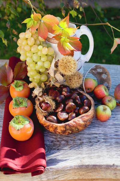 Wall Art - Photograph - Sweet Chestnuts, Grapes, Persimmons, Apples And Autumn Leaves by Eising Studio - Food Photo and Video