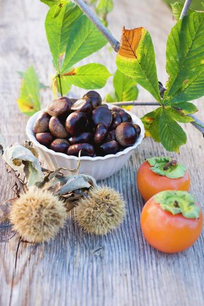 Wall Art - Photograph - Sweet Chestnuts, Persimmons And Chestnut Leaves by Eising Studio - Food Photo and Video