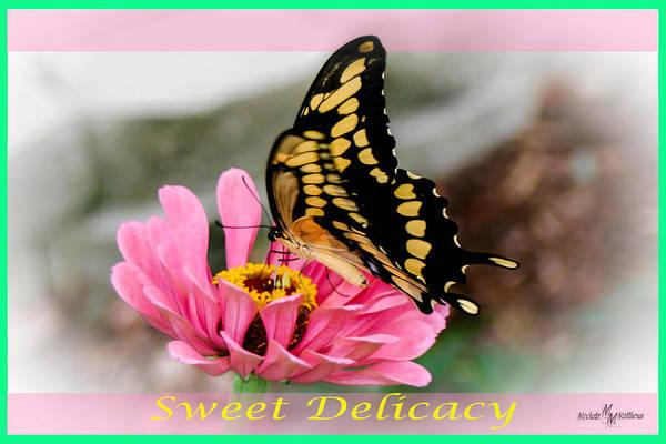 Wall Art - Digital Art - Sweet Delicacy 2 by Mechala Matthews