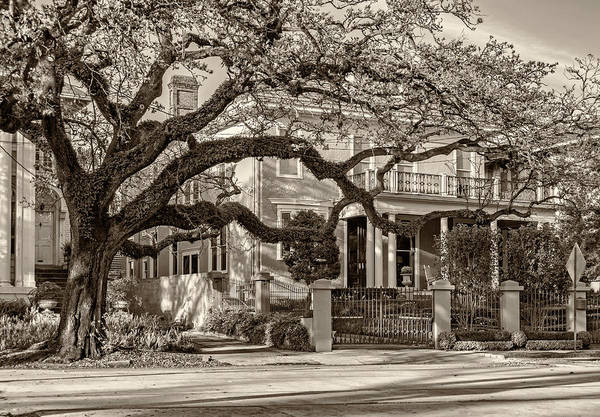 Charles Mansion Photograph - Sweet Home New Orleans 2 Sepia by Steve Harrington