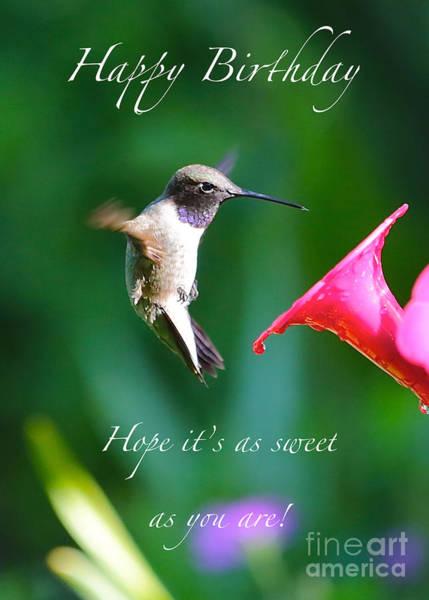Photograph - Sweet Hummingbird Birthday Card by Carol Groenen