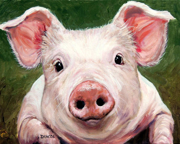 Pig Painting - Sweet Little Piglet On Green by Dottie Dracos
