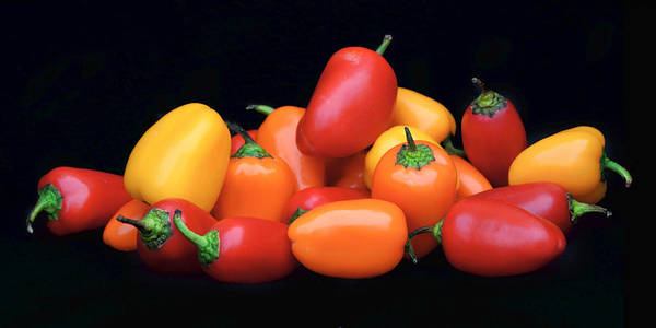 Complementary Colours Photograph - Sweet Mini Peppers by Nikolyn McDonald
