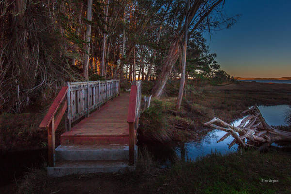 Photograph - Sweet Springs Shadows....dawn In Los Osos by Tim Bryan