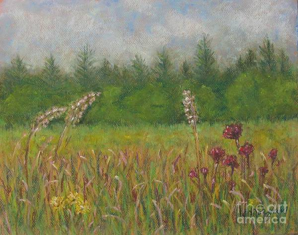 Painting - Calm Culloden by Laurie Morgan