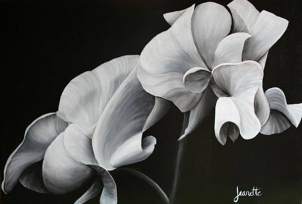 Painting - Sweetpea Blossoms by Jeanette Fellows