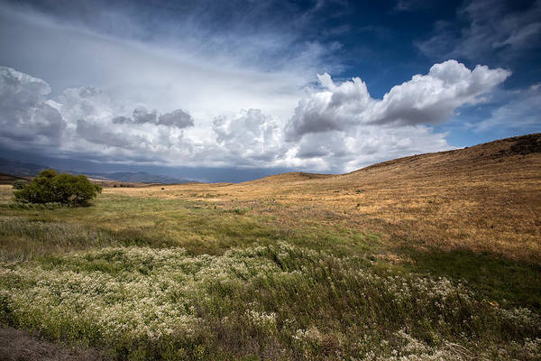 Prarie Photograph - Swept Away by Peter Tellone