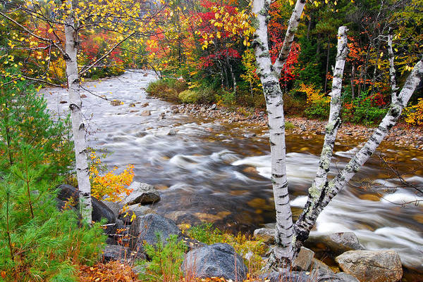 Photograph - Swift River by Michael Hubley