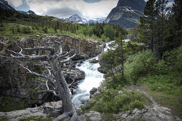 Photograph - Swiftcurrent River Below The Dam On Swiftcurrent Lake by Randall Nyhof