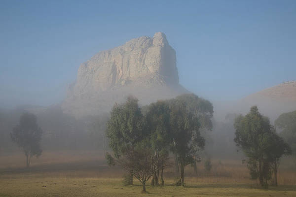 Trees In Fog Photograph - Swinburne Rock Behind Mist At Dawn by Frank Huster
