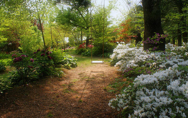 Photograph - Swing In The Garden by Sandy Keeton