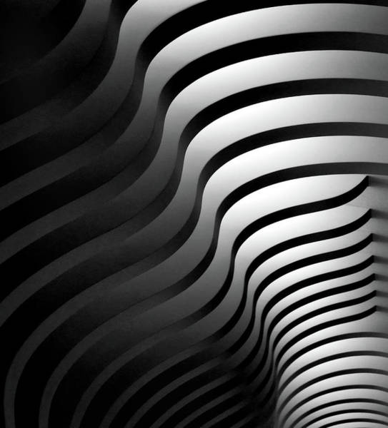 Zebra Pattern Photograph - Swinging Lines by Hans-wolfgang Hawerkamp