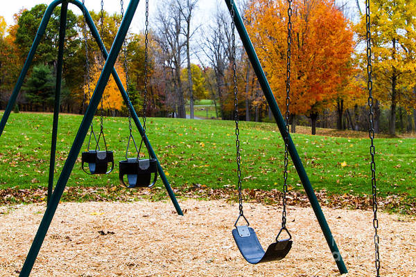 Photograph - Swings by William Norton