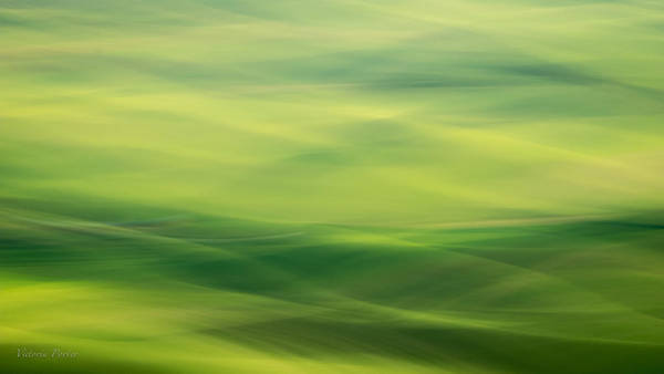 Photograph - Swipe Of Palouse Rolling Hills by Victoria Porter