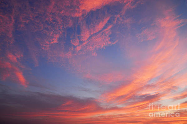 Photograph - Swirl Of Clouds At Dawn by Larry Ricker