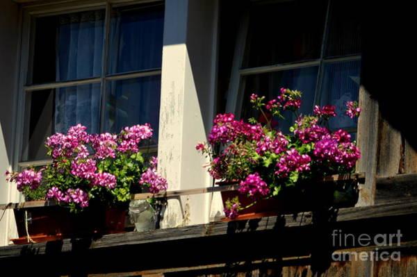 Photograph - Swiss Chalet Flower Window by Susanne Van Hulst