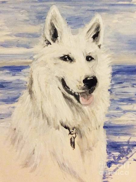 Painting - Swiss Shepherd by Abbie Shores