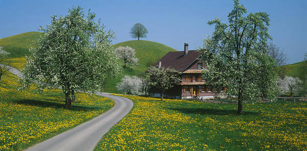 Chalet Photograph - Switzerland, Zug, Road by Panoramic Images