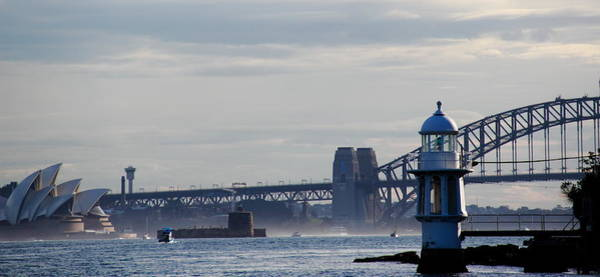 Photograph - Sydney Harbour by Debbie Cundy