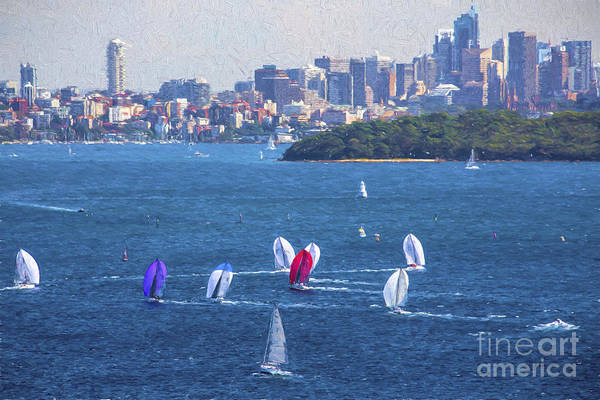 Wall Art - Photograph - Sydney Harbour With Yacht Race by Sheila Smart Fine Art Photography