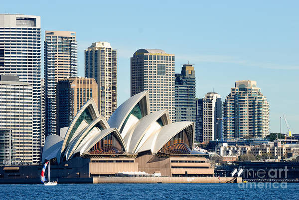 Photograph - Sydney Opera House And Sydney Harbor - A Classic View by David Hill