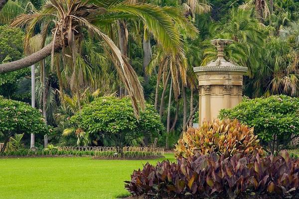 Photograph - Sydney's Royal Botanic Garden by Stuart Litoff