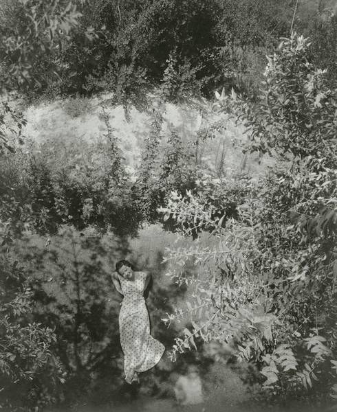 Lawn Photograph - Sylvia Sidney In Jennie Gerhadt by Edward Steichen