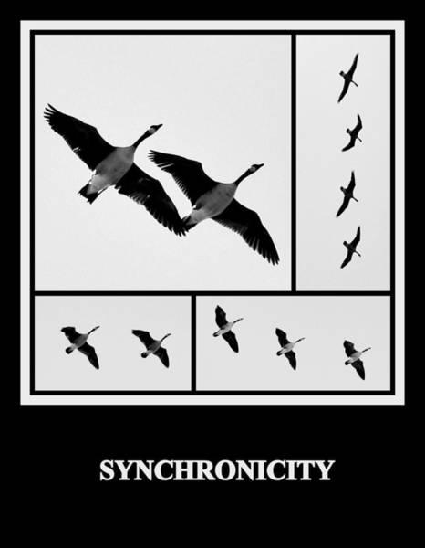 Photograph - Synchronicity by AJ  Schibig