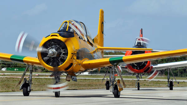 Photograph - T-28 Taxi  by David Hart
