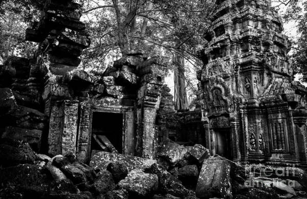 Photograph - Ta Prohm by Julian Cook