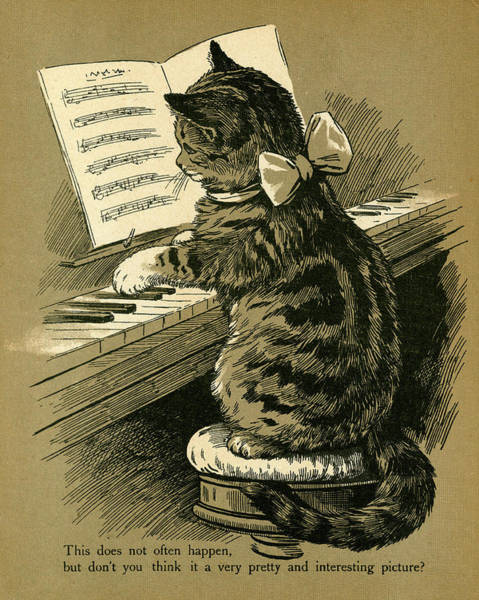Tabby Drawing - Tabby Cat Seating Up On A Stool Playing by Mary Evans Picture Library