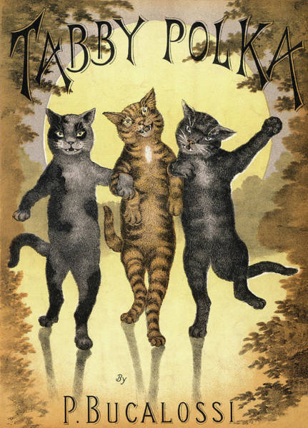 Trio Drawing - Tabby Polka  A Trio Of Cats With Arms by Mary Evans Picture Library
