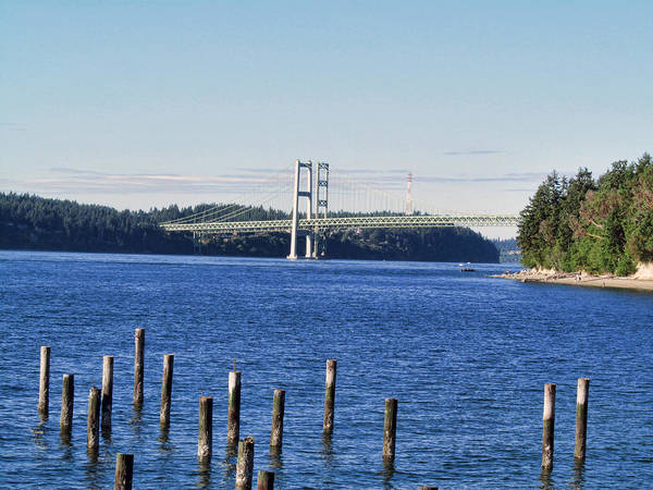 Photograph - Tacoma Narrows Bridge 53 by Ron Roberts