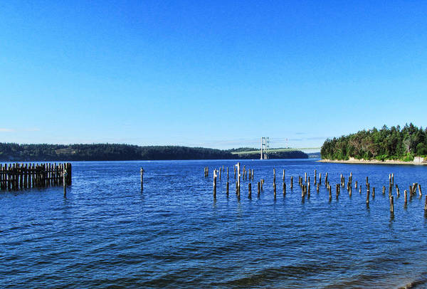 Photograph - Tacoma Narrows Bridge 56 by Ron Roberts