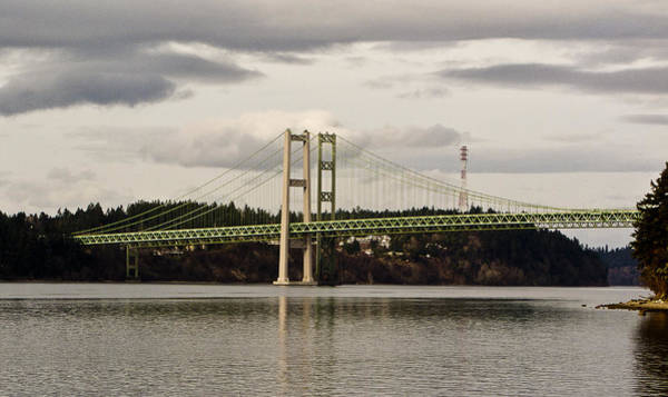 Photograph - Tacoma Narrows Bridge II by Ron Roberts