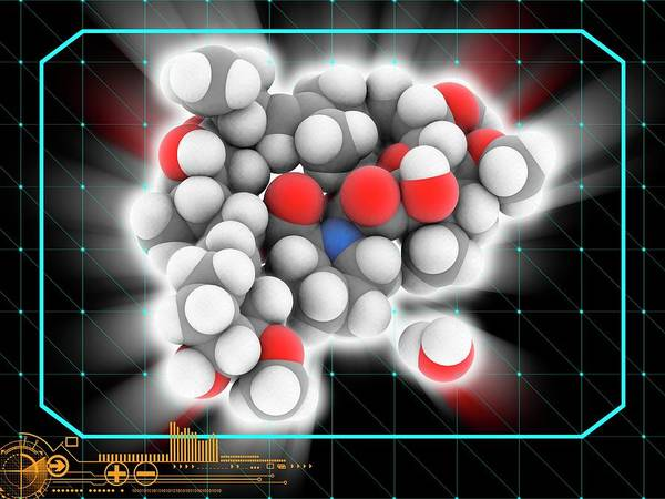 Wall Art - Photograph - Tacrolimus Hydrate Drug Molecule by Laguna Design/science Photo Library