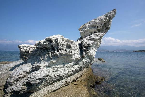 Geomorphology Wall Art - Photograph - Tafoni Weathering In Corsica by Dr Juerg Alean