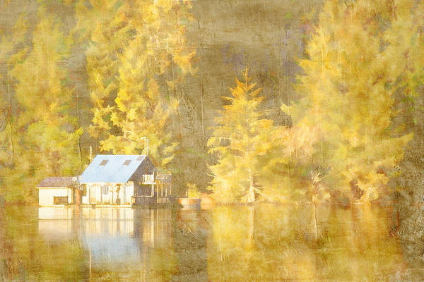 Wall Art - Photograph - Tahkenitch Lake Oregon by Carol Leigh